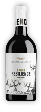 resilience_ombra-grillo