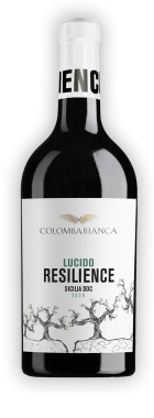 resilience_ombra-lucido