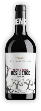 resilience_ombra-nda